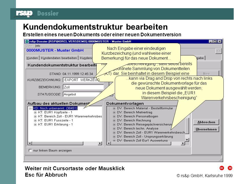© rs&p GmbH, Karlsruhe 1999 Dokument-Dateneingabe Eingabe der benötigten Dokumentdaten für das neue Dokument oder die neue Version Auf diesem Registerblatt können Sie die in den einzelnen Dokumentteilen vordefinierten Felder mit kundenspezifischen Daten füllen.