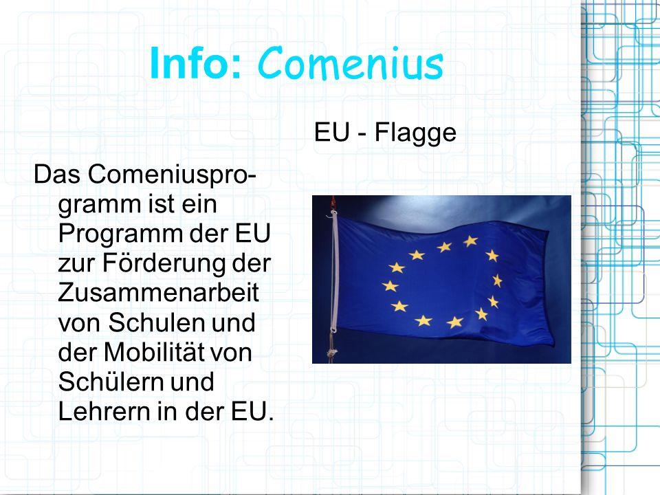 Lebenslanges-lernen http://www.lebenslanges-lernen.eu/ Homepage beinhaltet: Weitere Programme wie: Erasmus Hochschulbildung Leonardo Da Vinci berufliche Bildung Grundtvig allgemeine Erwach- senenbildung