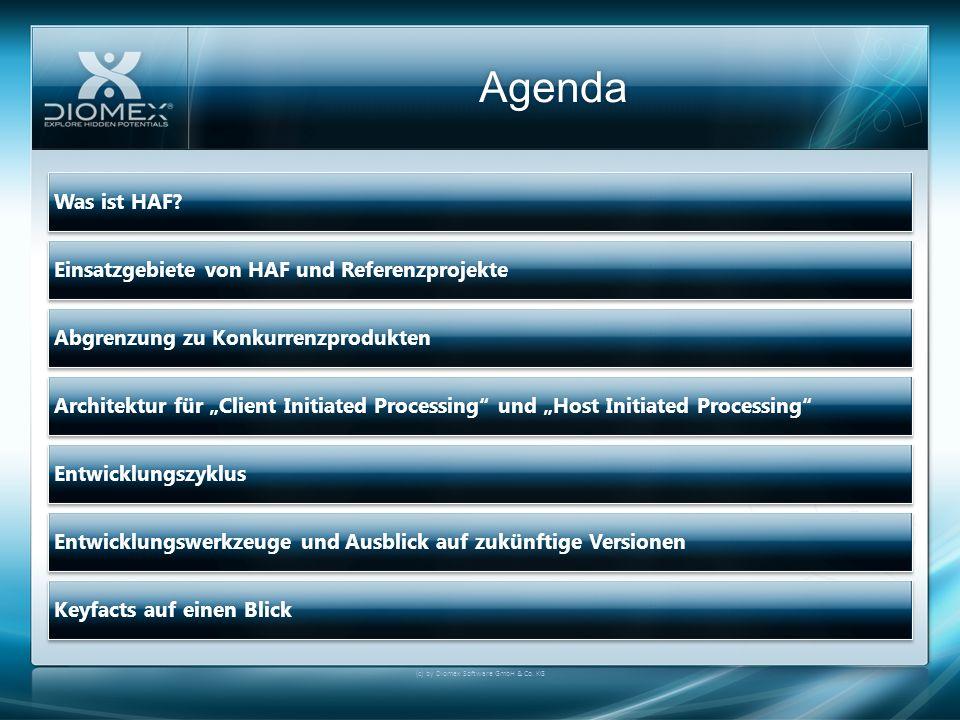 Agenda (c) by Diomex Software GmbH & Co. KG Was ist HAF?Was ist HAF? Einsatzgebiete von HAF und ReferenzprojekteEinsatzgebiete von HAF und Referenzpro