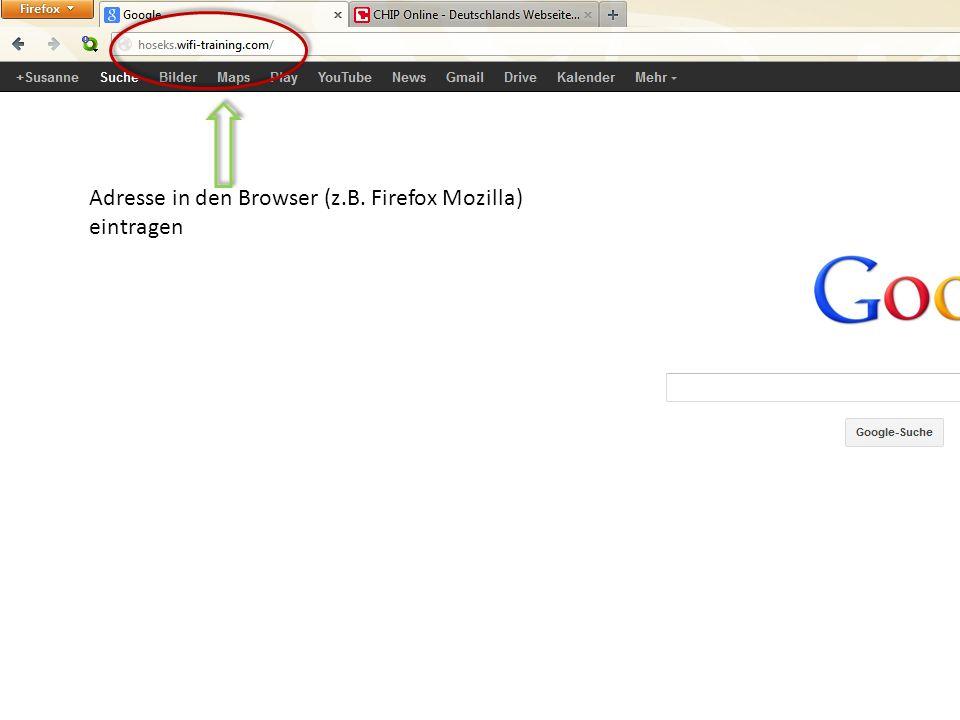 Adresse in den Browser (z.B. Firefox Mozilla) eintragen