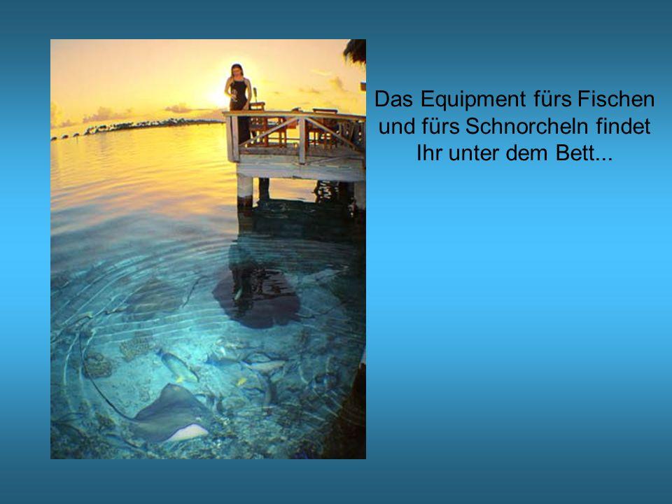 Das Equipment fürs Fischen und fürs Schnorcheln findet Ihr unter dem Bett...
