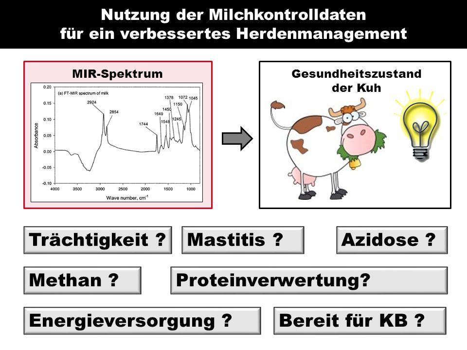 Nutzung der Milchkontrolldaten für ein verbessertes Herdenmanagement MIR-Spektrum Trächtigkeit .