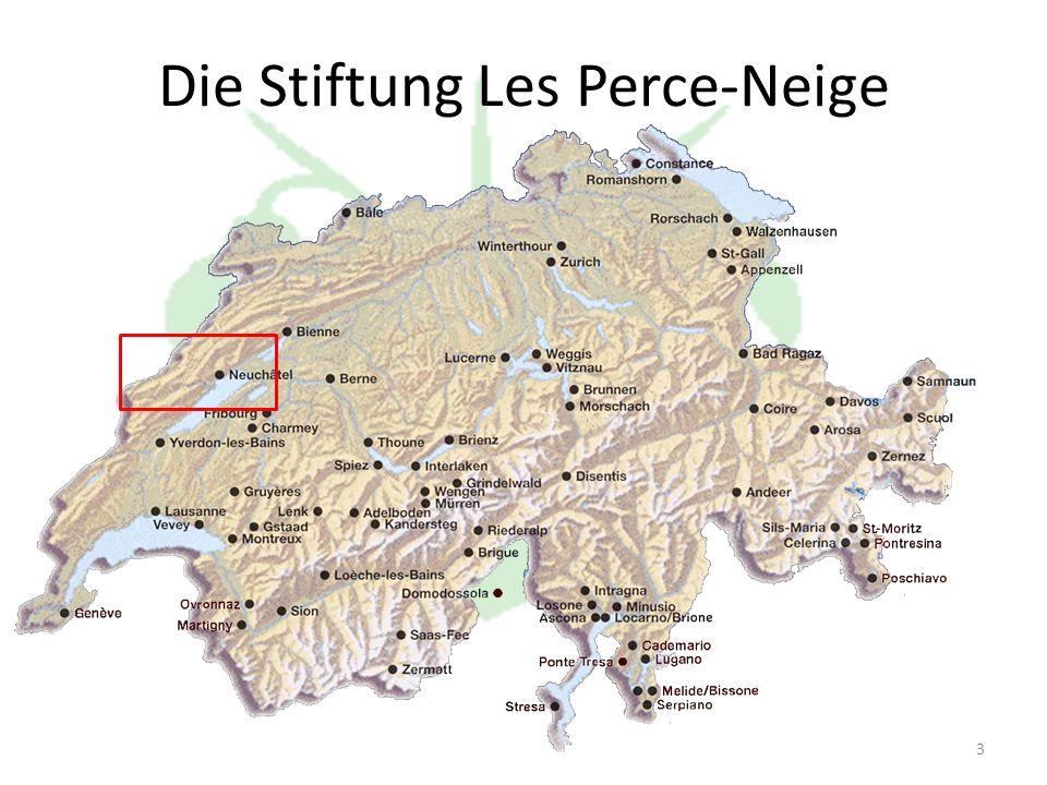 3 Die Stiftung Les Perce-Neige