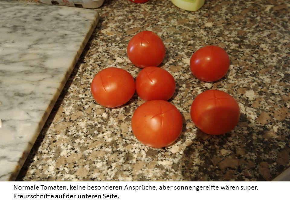 Wir brauchen für zwei Teller Suppe: 6 Tomaten 1 Paprika 1 mittelgrosse Zwiebel 1 scharfe Paprika etwas Pflanzenöl Salz, Pfeffer, Tomatenpüre aus der T