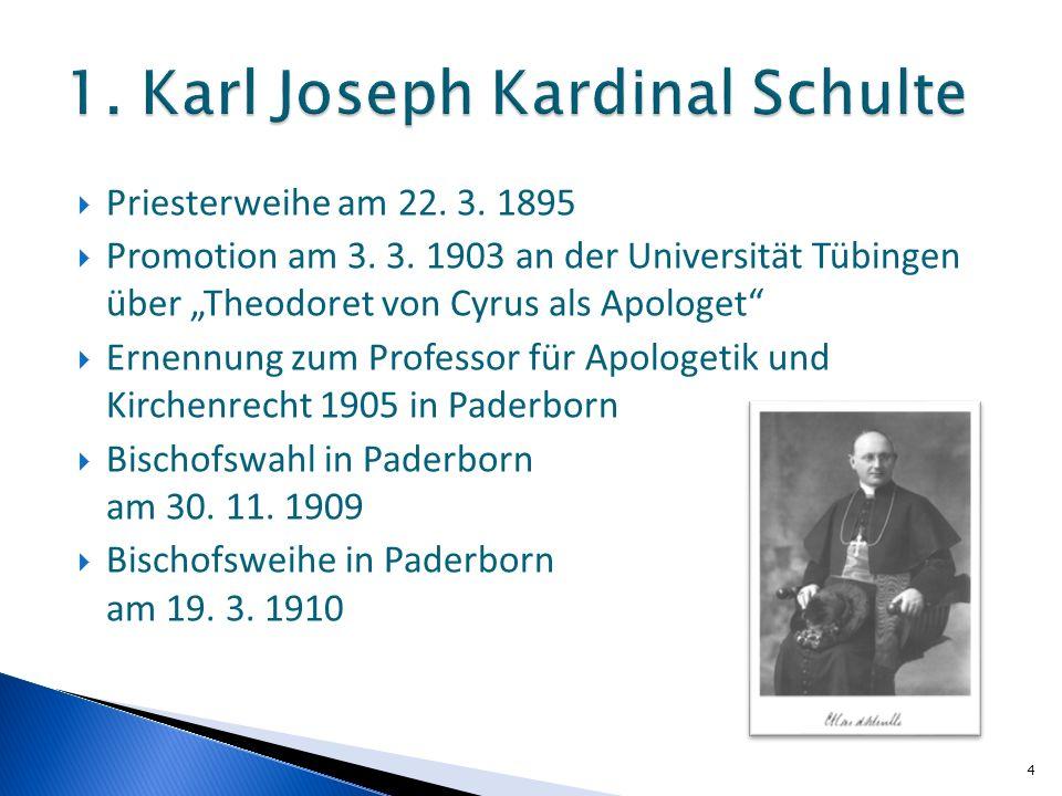 Priesterweihe am 22. 3. 1895 Promotion am 3. 3. 1903 an der Universität Tübingen über Theodoret von Cyrus als Apologet Ernennung zum Professor für Apo