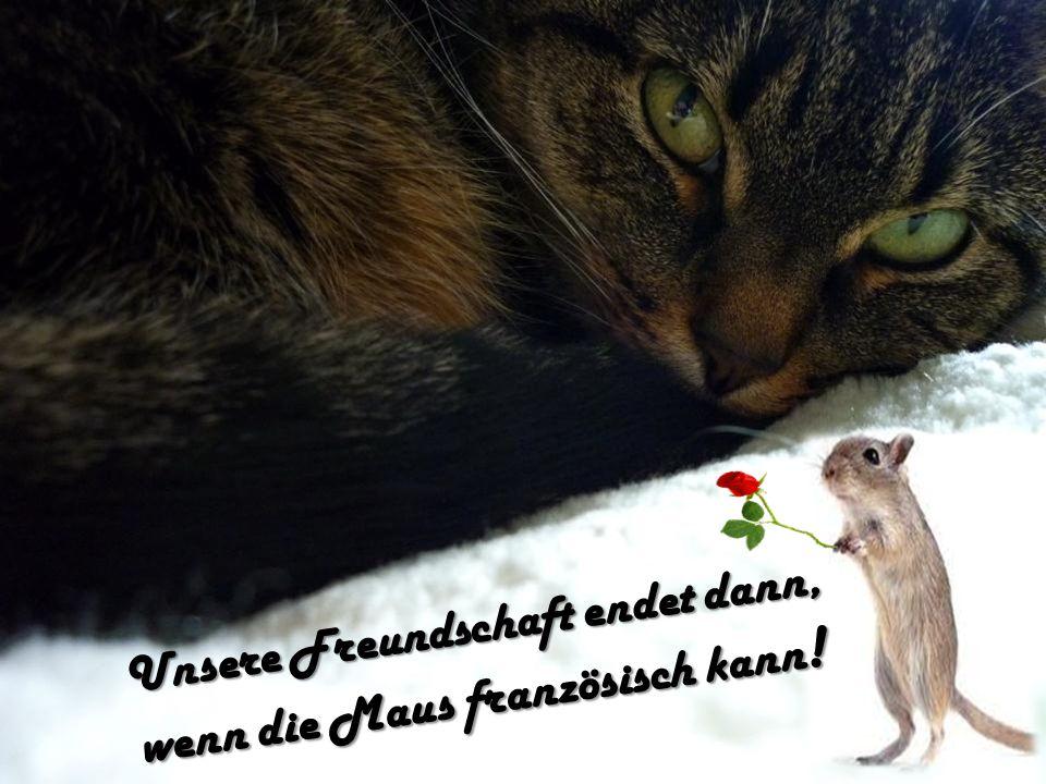 Unsere Freundschaft endet dann, wenn die Maus französisch kann !