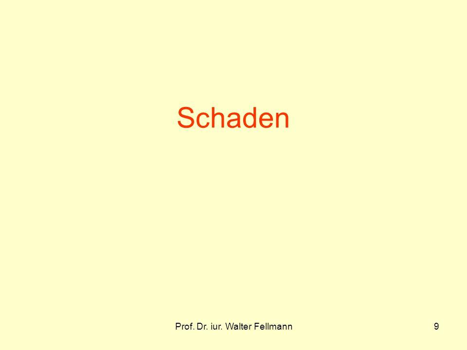 Prof. Dr. iur. Walter Fellmann9 Schaden