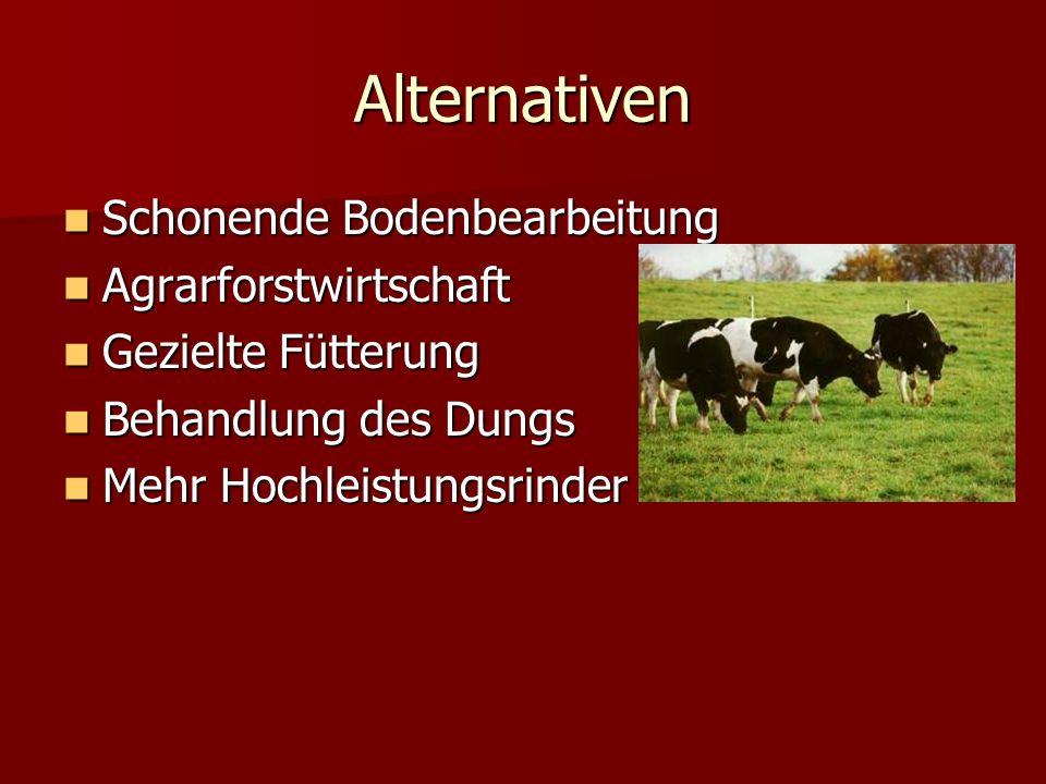 Alternativen Schonende Bodenbearbeitung Schonende Bodenbearbeitung Agrarforstwirtschaft Agrarforstwirtschaft Gezielte Fütterung Gezielte Fütterung Behandlung des Dungs Behandlung des Dungs Mehr Hochleistungsrinder Mehr Hochleistungsrinder