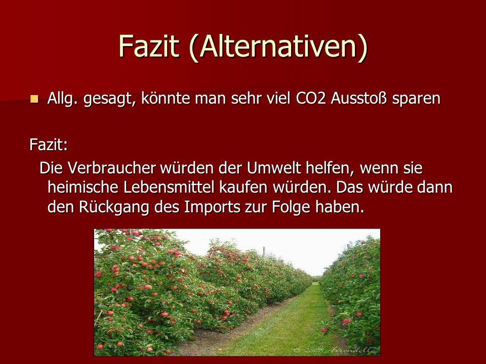 Fazit (Alternativen) Allg.gesagt, könnte man sehr viel CO2 Ausstoß sparen Allg.