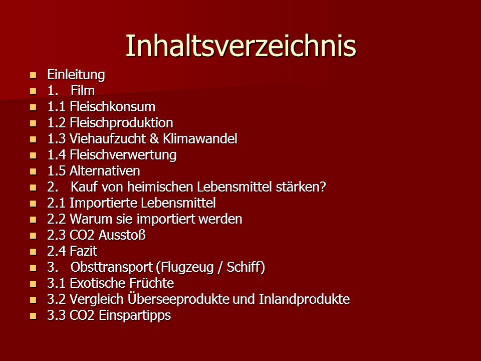 Inhaltsverzeichnis Einleitung Einleitung 1.Film 1.