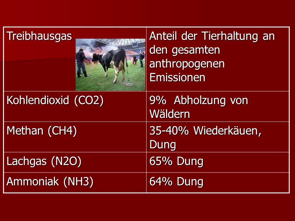 Treibhausgas Anteil der Tierhaltung an den gesamten anthropogenen Emissionen Kohlendioxid (CO2) 9% Abholzung von Wäldern Methan (CH4) 35-40% Wiederkäuen, Dung Lachgas (N2O) 65% Dung Ammoniak (NH3) 64% Dung