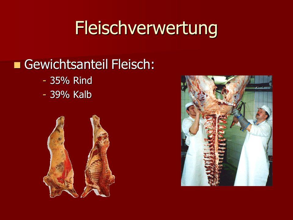 Fleischverwertung Gewichtsanteil Fleisch: Gewichtsanteil Fleisch: -35% Rind -39% Kalb
