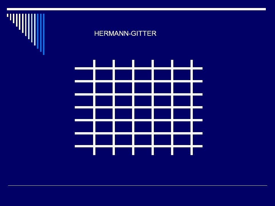 HERMANN-GITTER