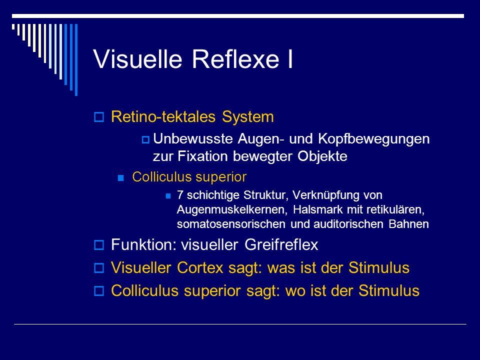 Visuelle Reflexe I Retino-tektales System Unbewusste Augen- und Kopfbewegungen zur Fixation bewegter Objekte Colliculus superior 7 schichtige Struktur