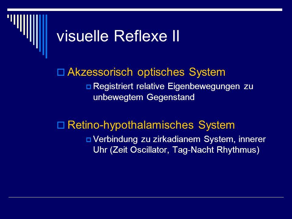 visuelle Reflexe II Akzessorisch optisches System Registriert relative Eigenbewegungen zu unbewegtem Gegenstand Retino-hypothalamisches System Verbind