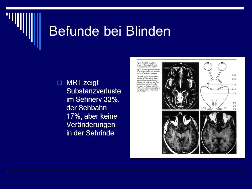 Befunde bei Blinden MRT zeigt Substanzverluste im Sehnerv 33%, der Sehbahn 17%, aber keine Veränderungen in der Sehrinde