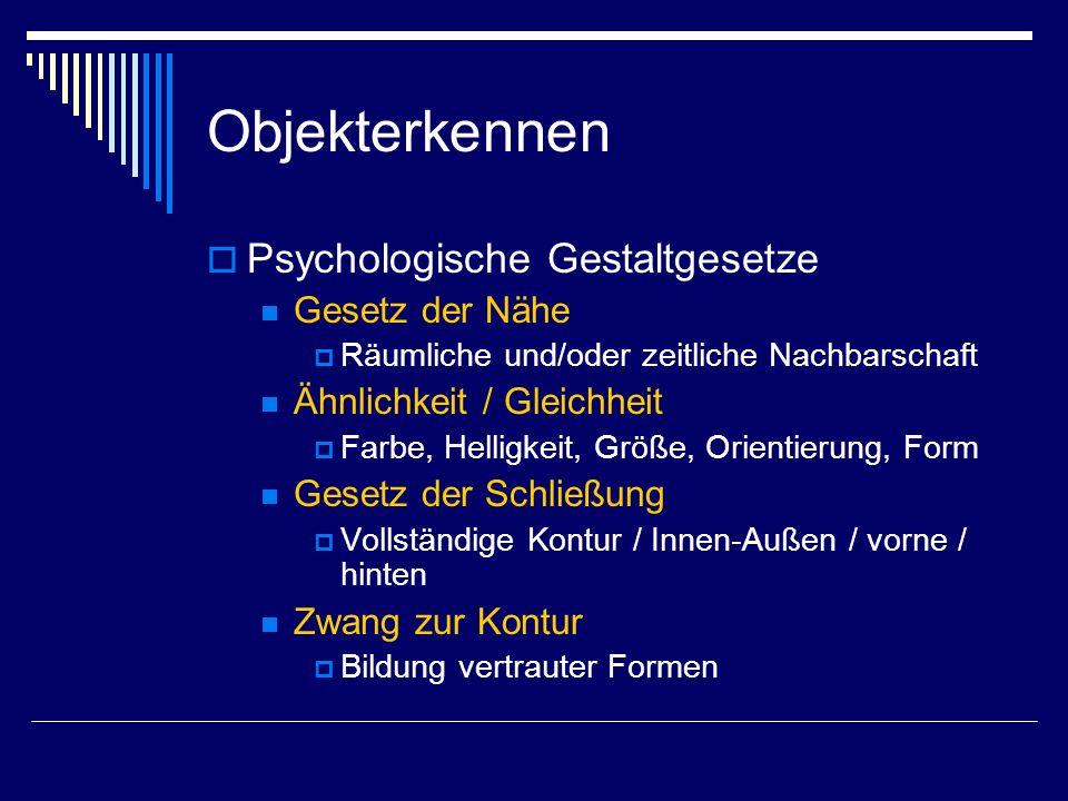 Objekterkennen Psychologische Gestaltgesetze Gesetz der Nähe Räumliche und/oder zeitliche Nachbarschaft Ähnlichkeit / Gleichheit Farbe, Helligkeit, Gr