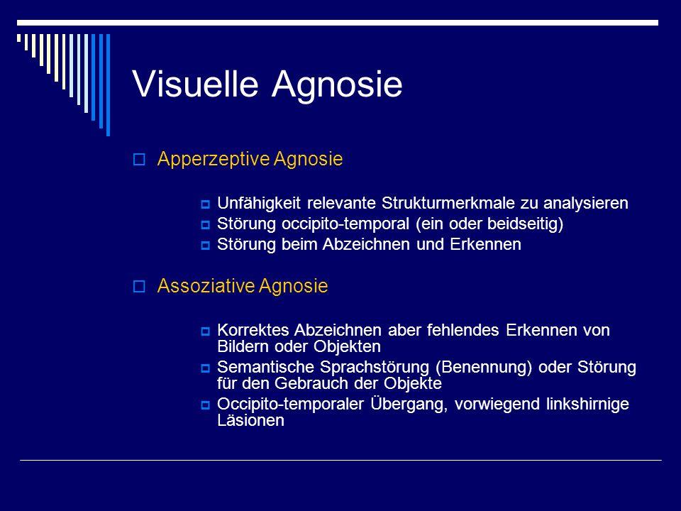 Visuelle Agnosie Apperzeptive Agnosie Unfähigkeit relevante Strukturmerkmale zu analysieren Störung occipito-temporal (ein oder beidseitig) Störung be