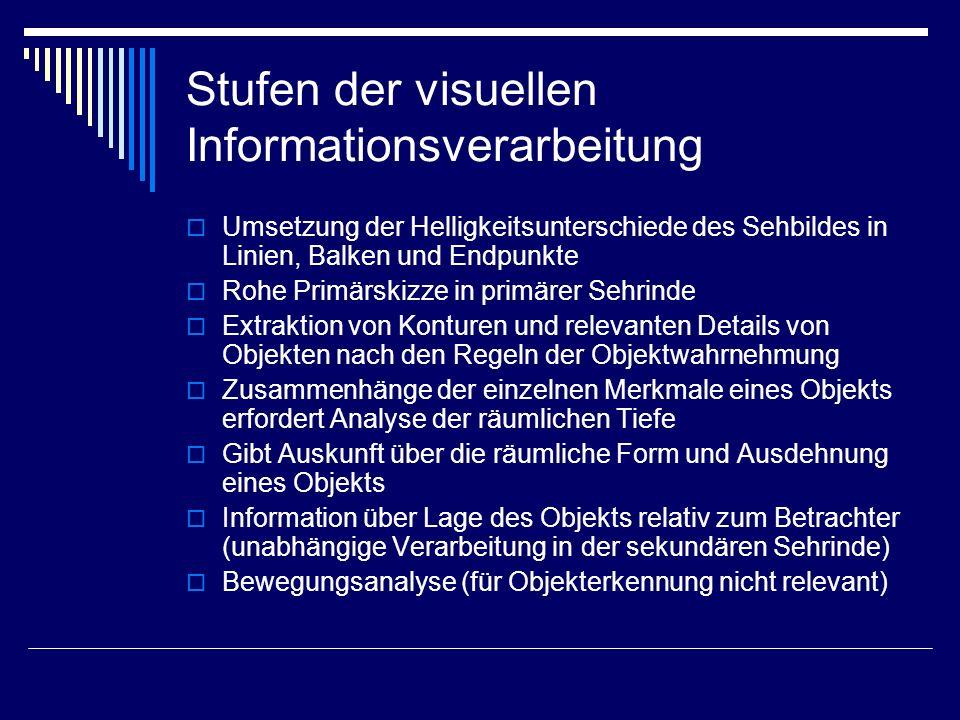 Stufen der visuellen Informationsverarbeitung Umsetzung der Helligkeitsunterschiede des Sehbildes in Linien, Balken und Endpunkte Rohe Primärskizze in