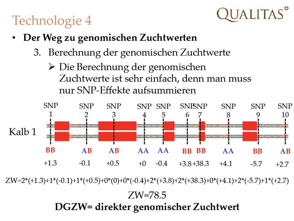 21.02.2014Strickhof Schweinetag 201317
