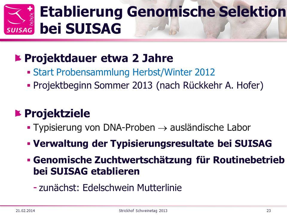 Etablierung Genomische Selektion bei SUISAG Projektdauer etwa 2 Jahre Start Probensammlung Herbst/Winter 2012 Projektbeginn Sommer 2013 (nach Rückkehr A.