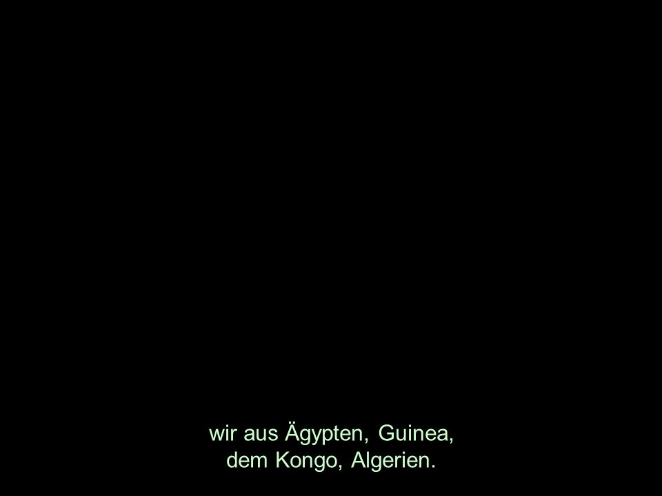 wir aus Ägypten, Guinea, dem Kongo, Algerien.