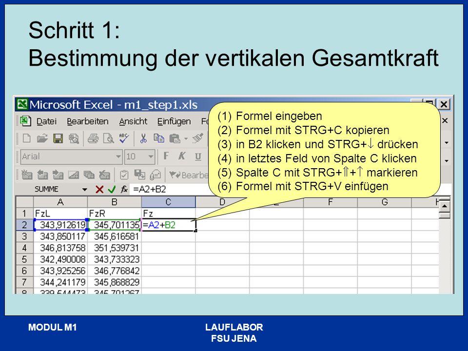 MODUL M1LAUFLABOR FSU JENA Schritt 1: Bestimmung der vertikalen Gesamtkraft (1)Formel eingeben (2)Formel mit STRG+C kopieren (3)in B2 klicken und STRG+ drücken (4)in letztes Feld von Spalte C klicken (5)Spalte C mit STRG+ + markieren (6)Formel mit STRG+V einfügen