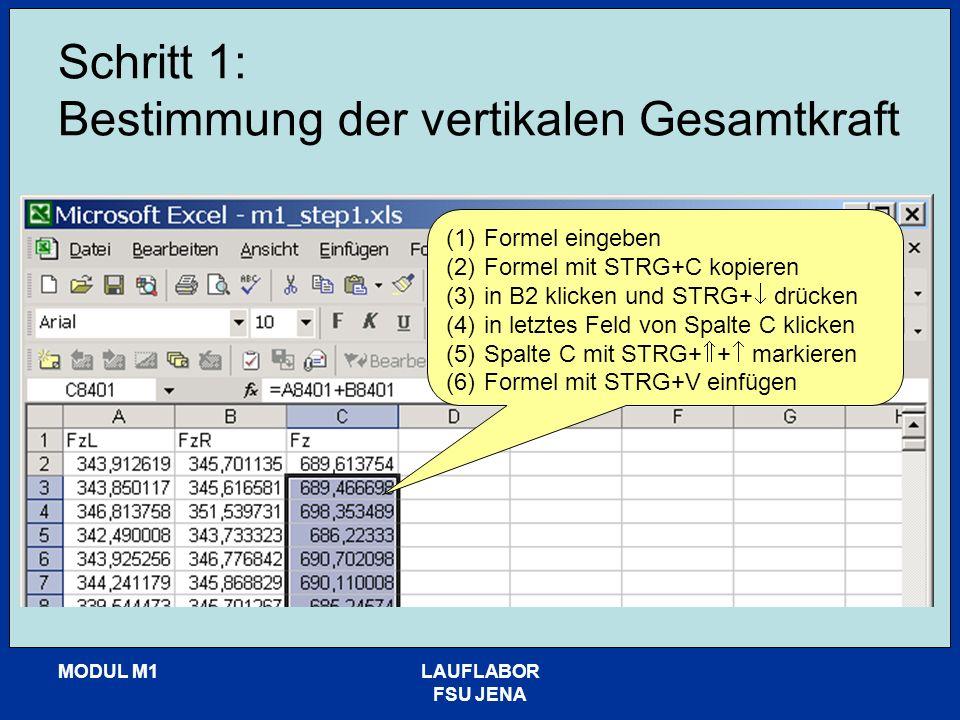 MODUL M1LAUFLABOR FSU JENA Schritt 2: Bestimmung der Körpermasse (1)Formel eingeben: m=mittelwert(Fz)/g