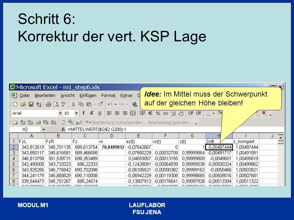 MODUL M1LAUFLABOR FSU JENA Schritt 6: Korrektur der vert. KSP Lage Idee: Im Mittel muss der Schwerpunkt auf der gleichen Höhe bleiben!