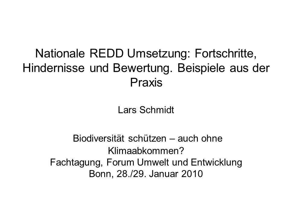 Nationale REDD Umsetzung: Fortschritte, Hindernisse und Bewertung. Beispiele aus der Praxis Lars Schmidt Biodiversität schützen – auch ohne Klimaabkom