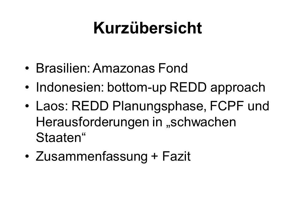 Kurzübersicht Brasilien: Amazonas Fond Indonesien: bottom-up REDD approach Laos: REDD Planungsphase, FCPF und Herausforderungen in schwachen Staaten Z