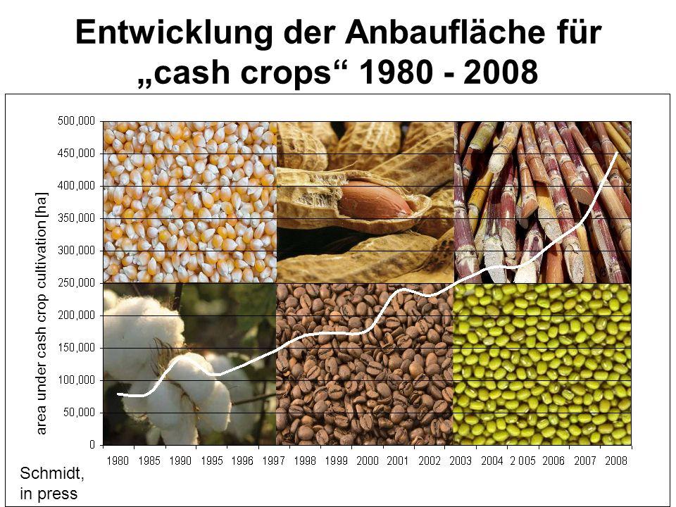 area under cash crop cultivation [ha] Entwicklung der Anbaufläche für cash crops 1980 - 2008 Schmidt, in press