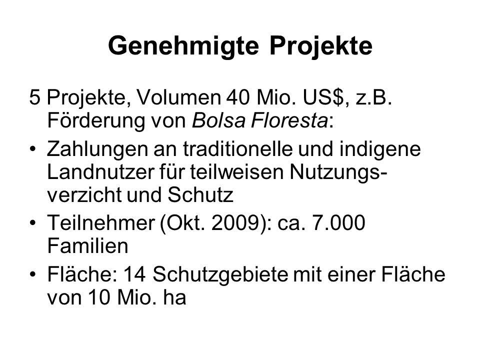 Genehmigte Projekte 5 Projekte, Volumen 40 Mio. US$, z.B. Förderung von Bolsa Floresta: Zahlungen an traditionelle und indigene Landnutzer für teilwei