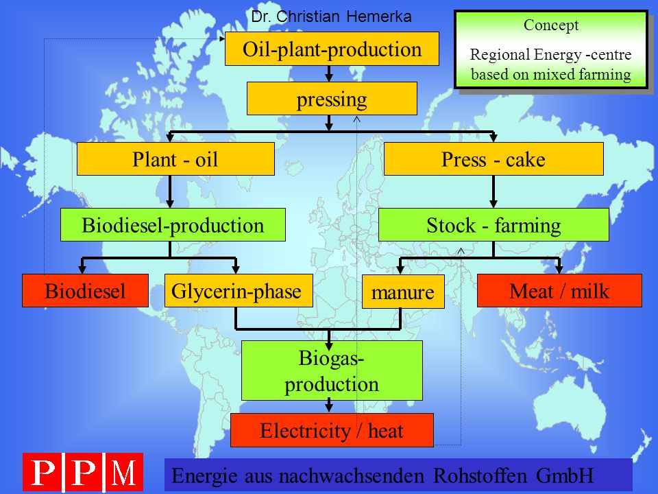Energie GERMANY GmbH Dr. Christian Hemerka Oil-plant-production pressing Plant - oil BiodieselGlycerin-phase Press - cake manure Meat / milk Biogas- p