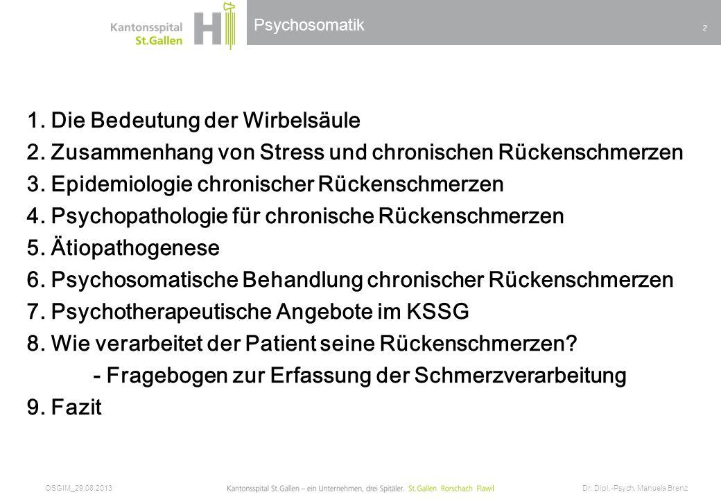 Psychosomatik 1. Die Bedeutung der Wirbelsäule 2. Zusammenhang von Stress und chronischen Rückenschmerzen 3. Epidemiologie chronischer Rückenschmerzen