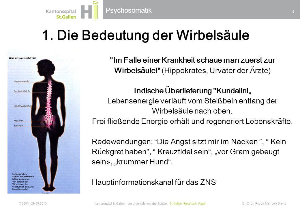 Psychosomatik 1. Die Bedeutung der Wirbelsäule OSGIM_29.08.2013 Dr. Dipl.-Psych. Manuela Brenz 3