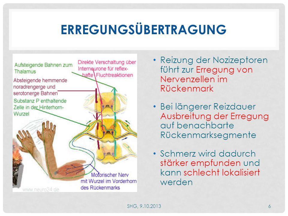 ENTWICKLUNG CHRONISCHER SCHMERZEN SHG, 9.10.20137