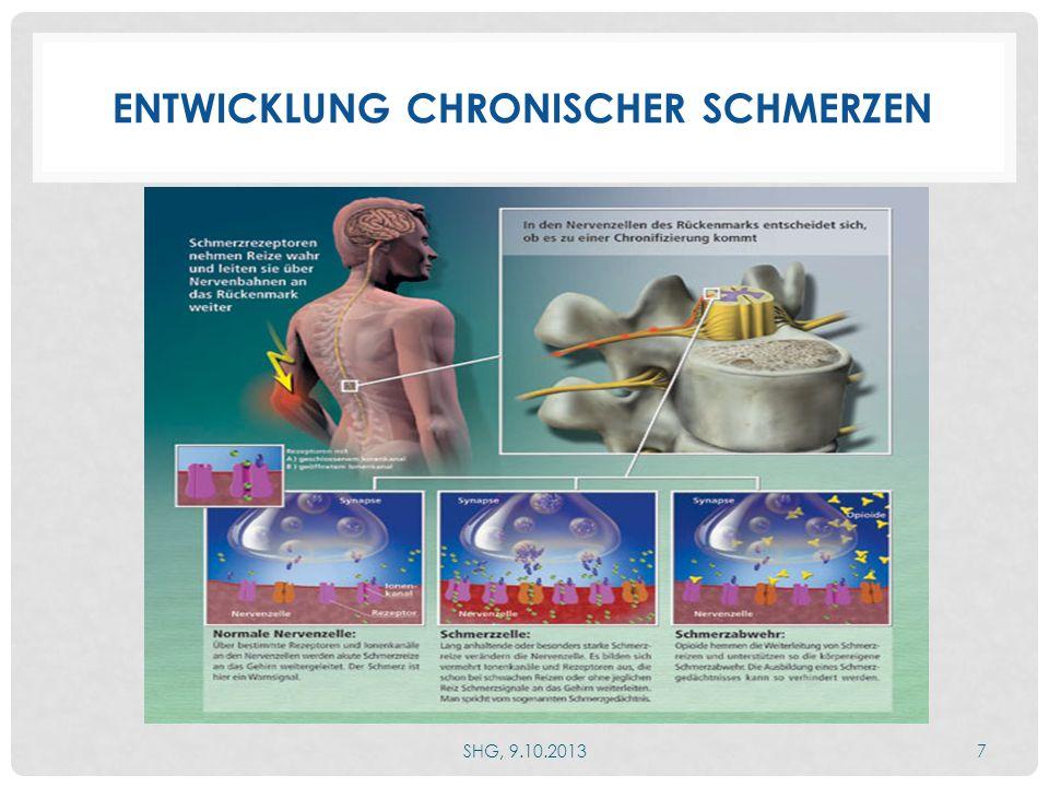 NEUROPLASTIZITÄT AUCH NERVENZELLEN LERNEN DAZU Entwicklung eines Schmerzgedächtnisses führt zu chronischem Schmerz und vermehrter Schmerzempfindlichkeit SHG, 9.10.20138