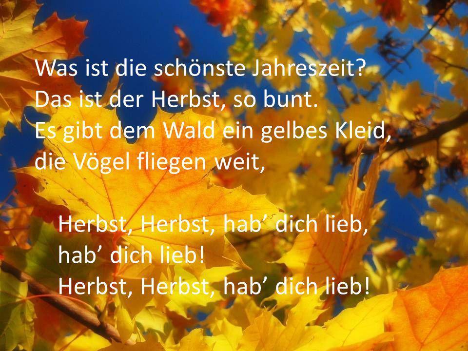 Was ist die schönste Jahreszeit? Das ist der Herbst, so bunt. Es gibt dem Wald ein gelbes Kleid, die Vögel fliegen weit, Herbst, Herbst, hab dich lieb