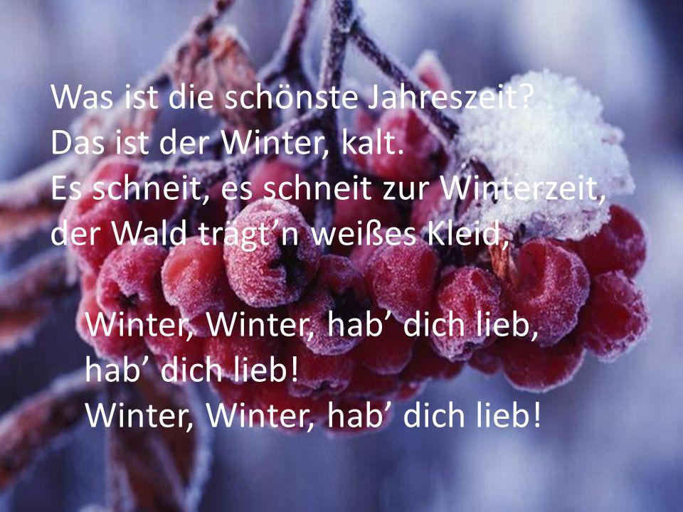 Was ist die schönste Jahreszeit? Das ist der Winter, kalt. Es schneit, es schneit zur Winterzeit, der Wald trägtn weißes Kleid, Winter, Winter, hab di