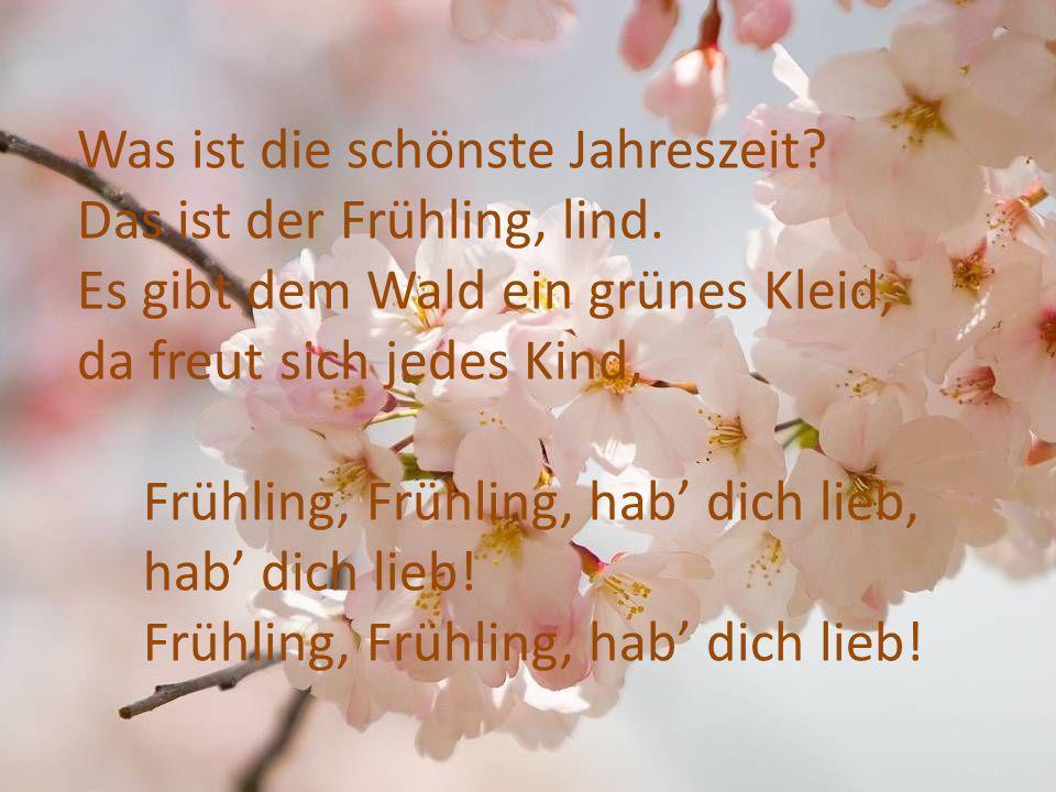 Was ist die schönste Jahreszeit? Das ist der Frühling, lind. Es gibt dem Wald ein grünes Kleid, da freut sich jedes Kind, Frühling, Frühling, hab dich