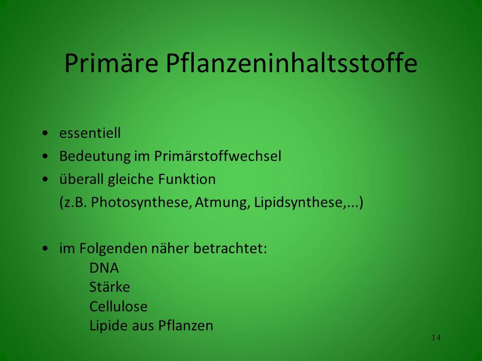 Primäre Pflanzeninhaltsstoffe essentiell Bedeutung im Primärstoffwechsel überall gleiche Funktion (z.B. Photosynthese, Atmung, Lipidsynthese,...) im F