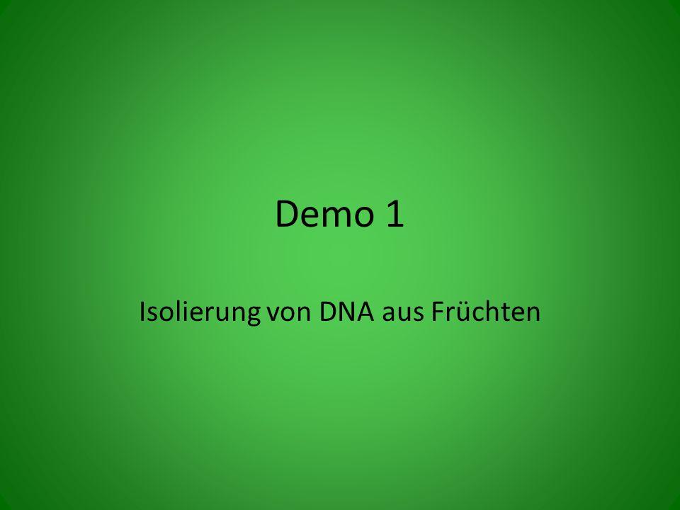 Demo 1 Isolierung von DNA aus Früchten