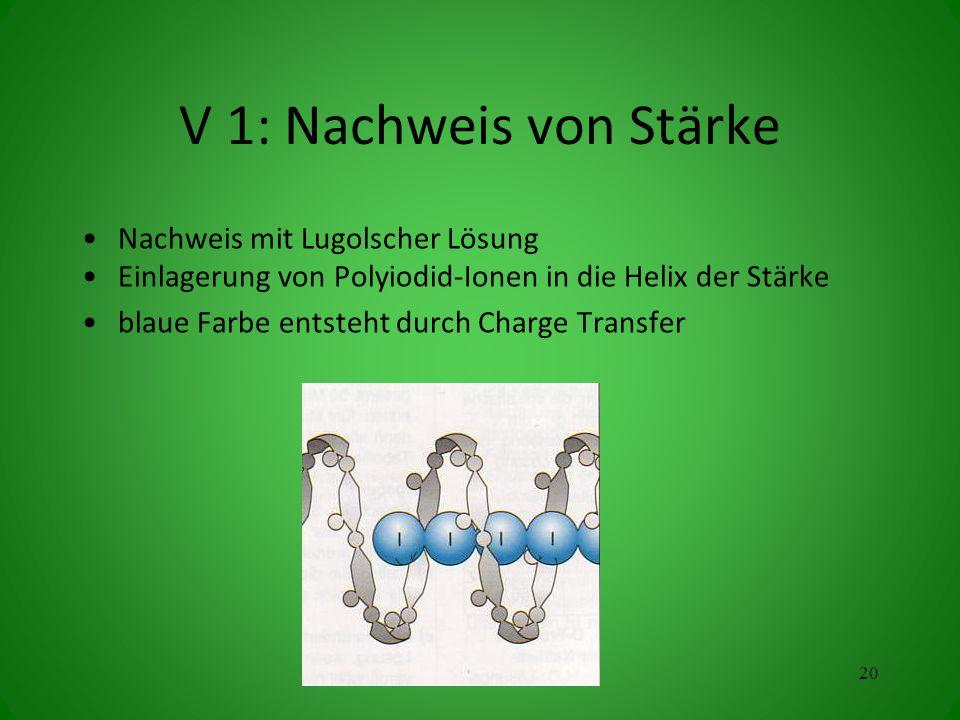 V 1: Nachweis von Stärke Nachweis mit Lugolscher Lösung Einlagerung von Polyiodid-Ionen in die Helix der Stärke blaue Farbe entsteht durch Charge Transfer 20