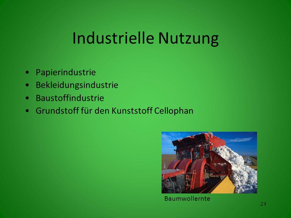 Industrielle Nutzung Papierindustrie Bekleidungsindustrie Baustoffindustrie Grundstoff für den Kunststoff Cellophan 24 Baumwollernte