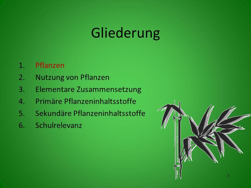 Gliederung 1.Pflanzen 2.Nutzung von Pflanzen 3.Elementare Zusammensetzung 4.Primäre Pflanzeninhaltsstoffe 5.Sekundäre Pflanzeninhaltsstoffe 6.Schulrel
