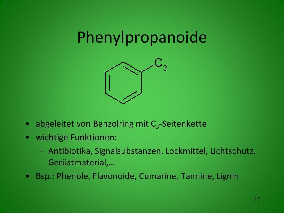 Phenylpropanoide abgeleitet von Benzolring mit C 3 -Seitenkette wichtige Funktionen: –Antibiotika, Signalsubstanzen, Lockmittel, Lichtschutz, Gerüstmaterial,… Bsp.: Phenole, Flavonoide, Cumarine, Tannine, Lignin 37