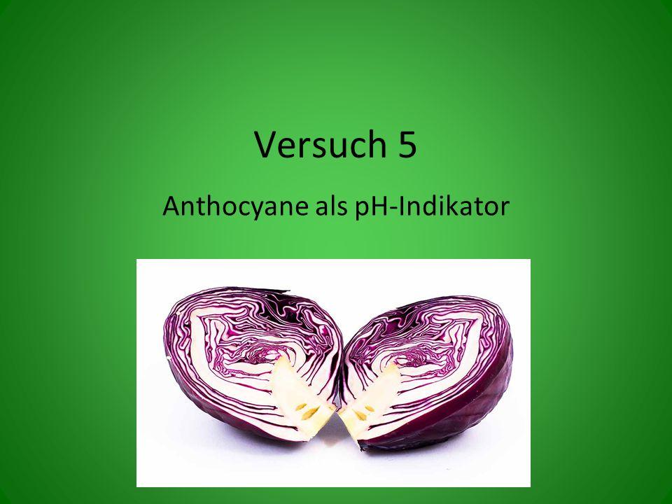 Versuch 5 Anthocyane als pH-Indikator