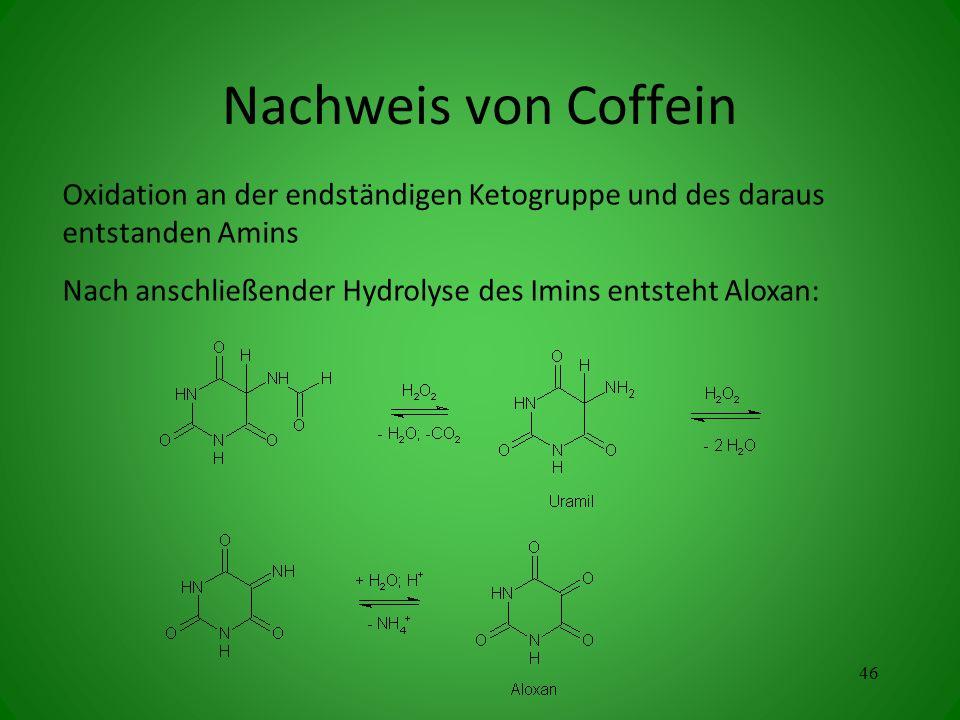 Oxidation an der endständigen Ketogruppe und des daraus entstanden Amins Nach anschließender Hydrolyse des Imins entsteht Aloxan: 46 Nachweis von Coffein