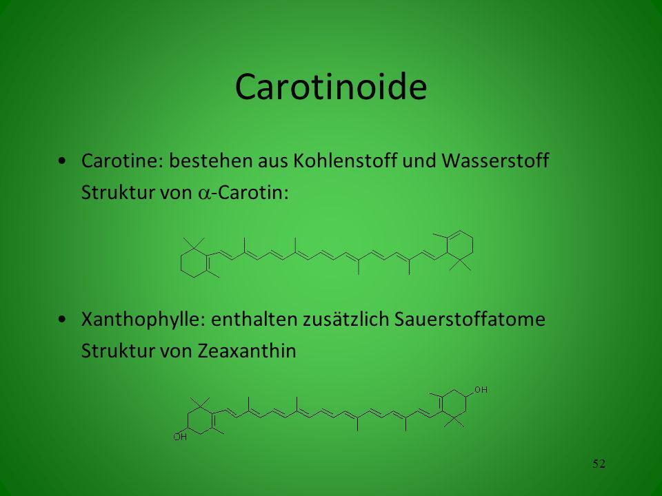 Carotinoide Carotine: bestehen aus Kohlenstoff und Wasserstoff Struktur von -Carotin: Xanthophylle: enthalten zusätzlich Sauerstoffatome Struktur von